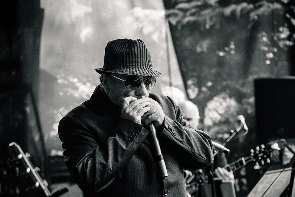 Van Morrison (pressefoto: Bradley Quinn)