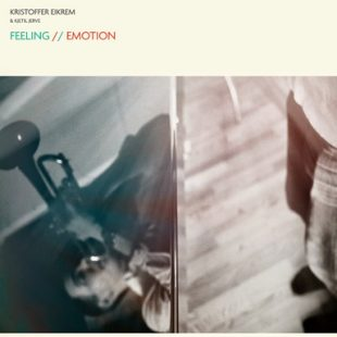 «Feeling/Emotion» cover