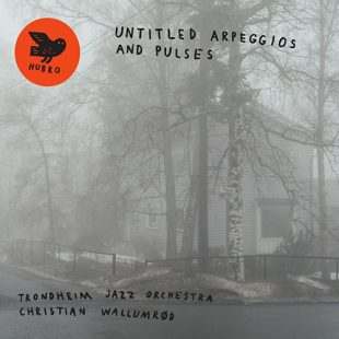 «Untitled Arpeggios and Pulses» cover