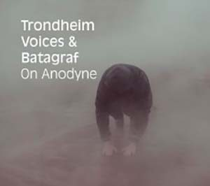 «On Anodyne» cover