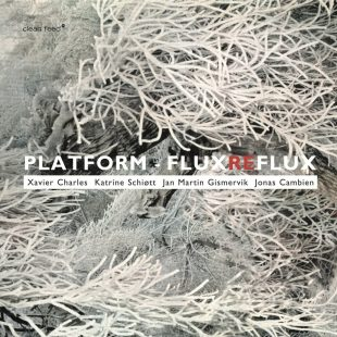 """""""Flux Reflux"""" cover"""