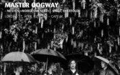 Master Oogway  – Nesten «Norgesmestre»