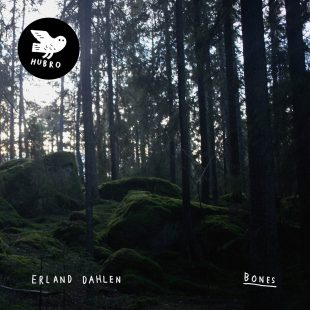 «Bones» cover