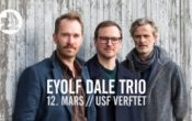 EYOLF DALE TRIO